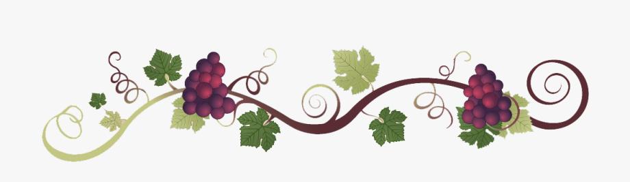Grapevine Clipart Grape Italian.