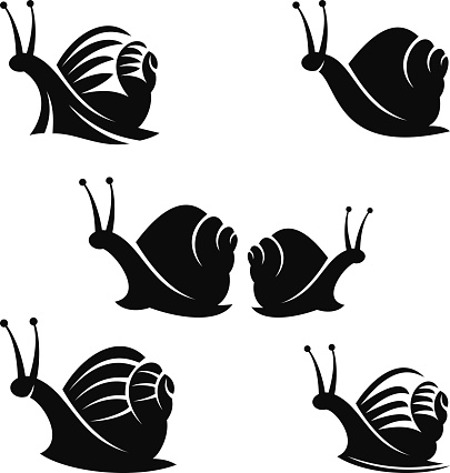 Snail Clip Art, Vector Images & Illustrations.