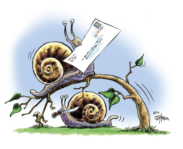 1000+ images about Snails on Pinterest.