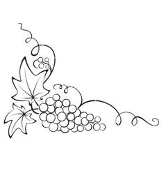 Grapes graphic on grape vines coloring pages and clip art.