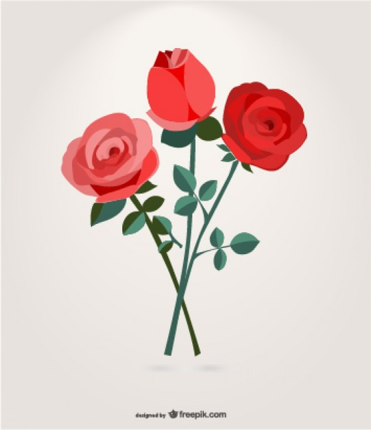 Roses bouquet graphic Vector.