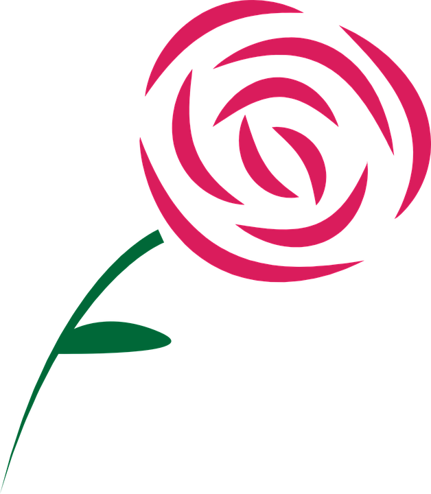 Free vector graphic: Rose, Beauty, Pink, Graphic.