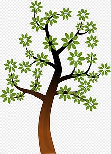 俯视森林图片大全素材库_俯视森林背景图片,摄影照片免费下载.