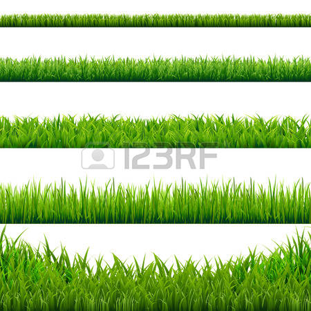 235,572 Grass Stock Vector Illustration And Royalty Free Grass Clipart.