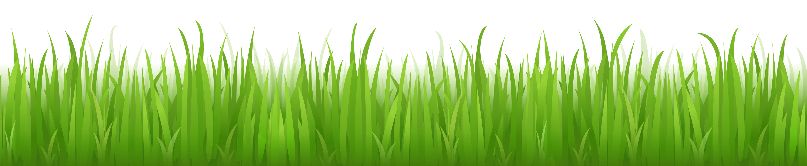 Grass PNG images, pictures.
