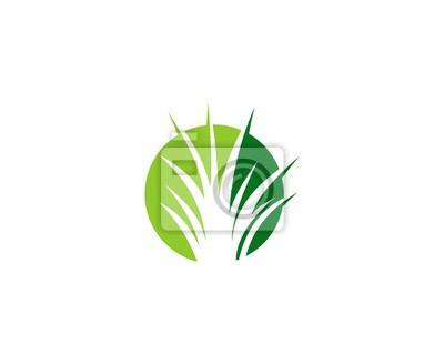 Gras logo wandposter • poster Aloe, Ökologie, Pflege.