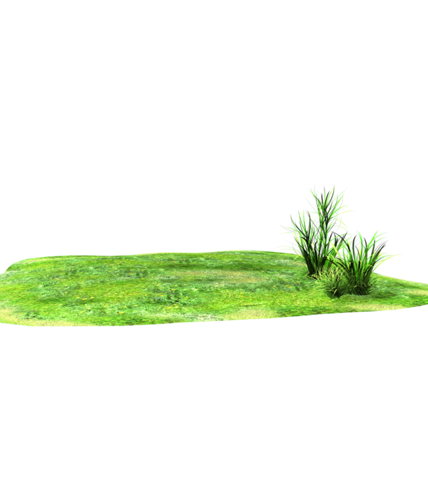 Landscaping clipart 3d grass, Landscaping 3d grass.