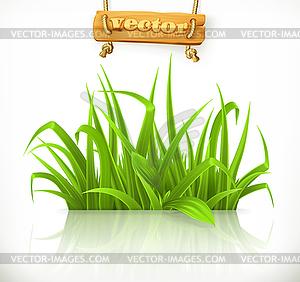 Spring grass, 3d icon.