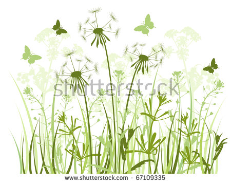 Clipart Green Grass Field With Dandelions.