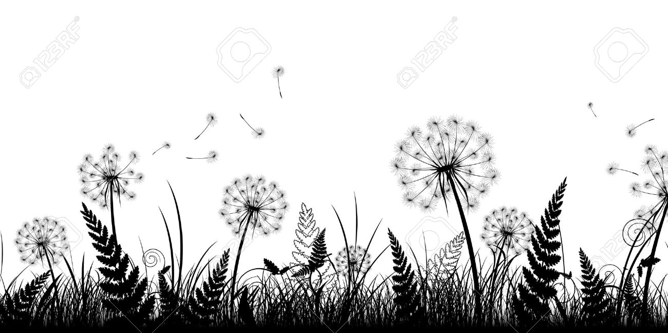 Dandelion Lawn Stock Photos, Pictures, Royalty Free Dandelion Lawn.