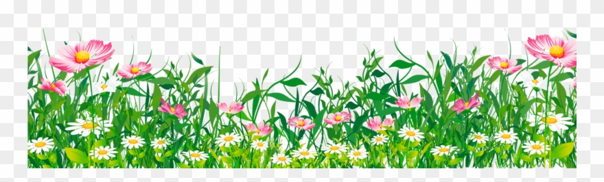 Grass With Flower Clipart.
