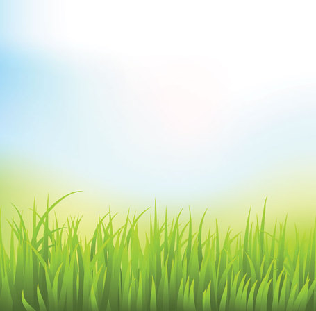 Abstract Green Grass Background with Blue Sky (Free.