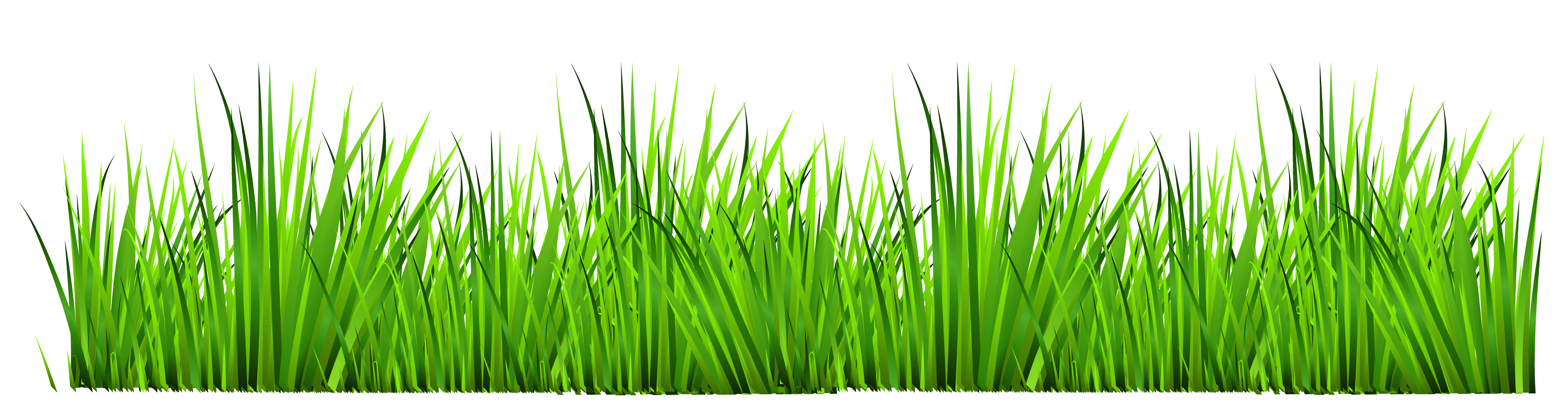 Free Grass Border Cliparts, Download Free Clip Art, Free Clip Art on.
