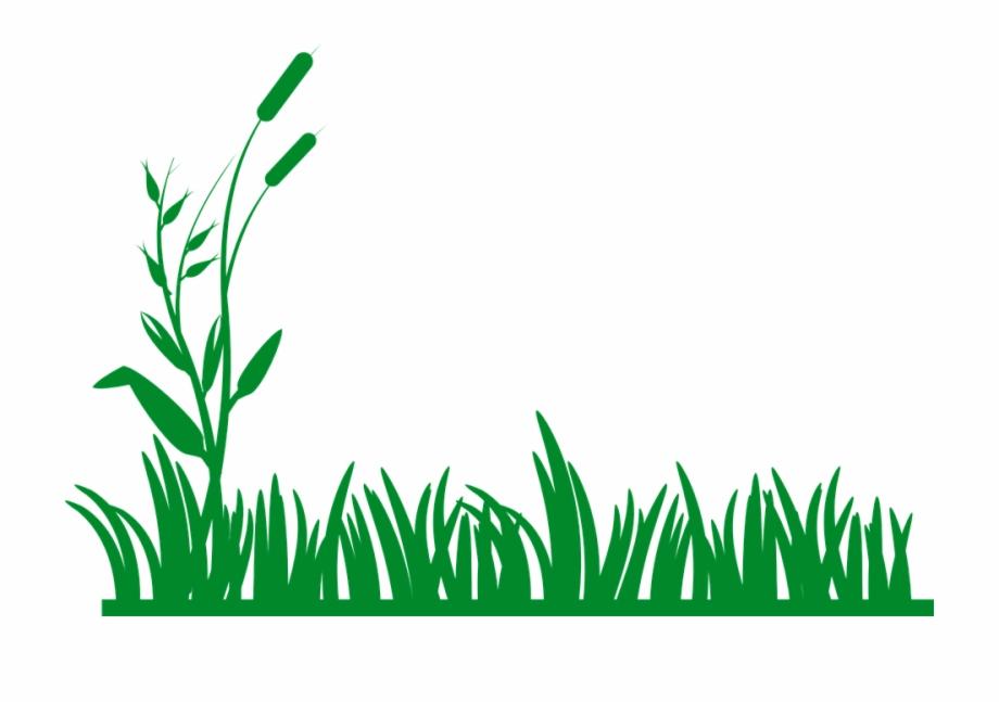 Grass Plants Green Grass Border Clipart.