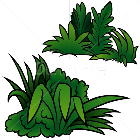 Cartoon Plant.