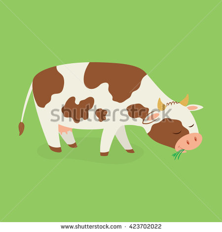 Cow Eating Grass Stock Images, Royalty.
