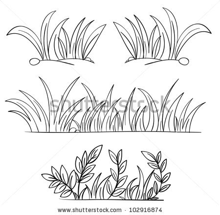 Illustration Grass Plant Outlines Stock Vector 102916874.