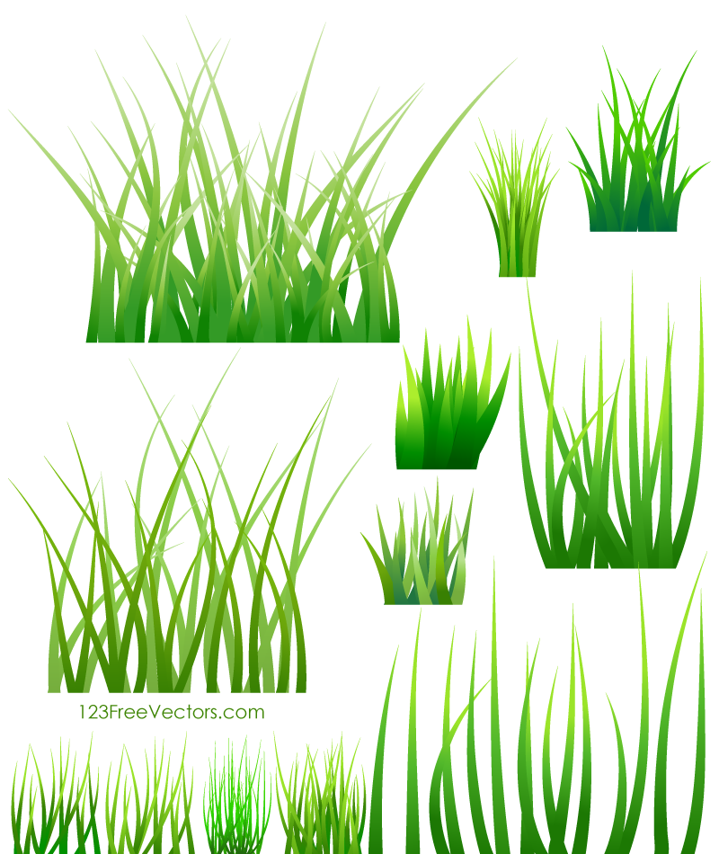 Green Grass Vector.