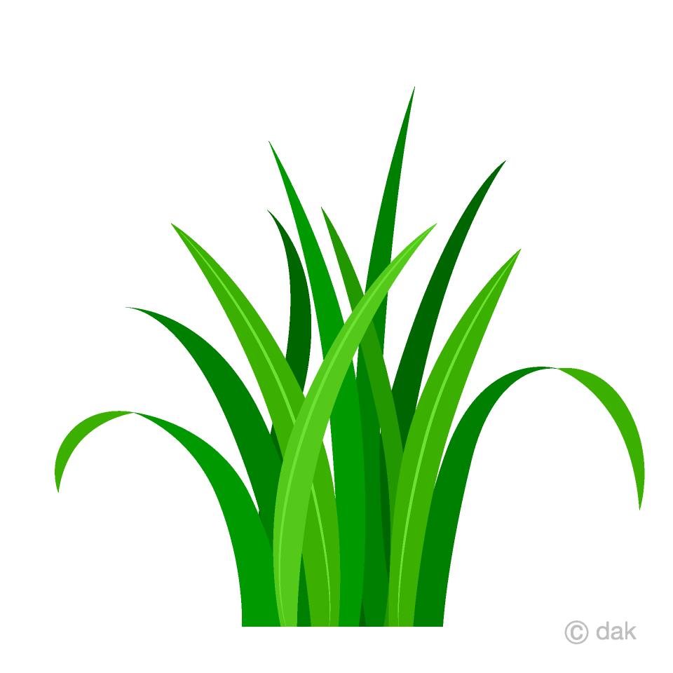 Free Simple Green Grass Clipart Image|Illustoon.