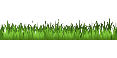 Grass Clipart Transparent Background (83+ images in Collection) Page 1.