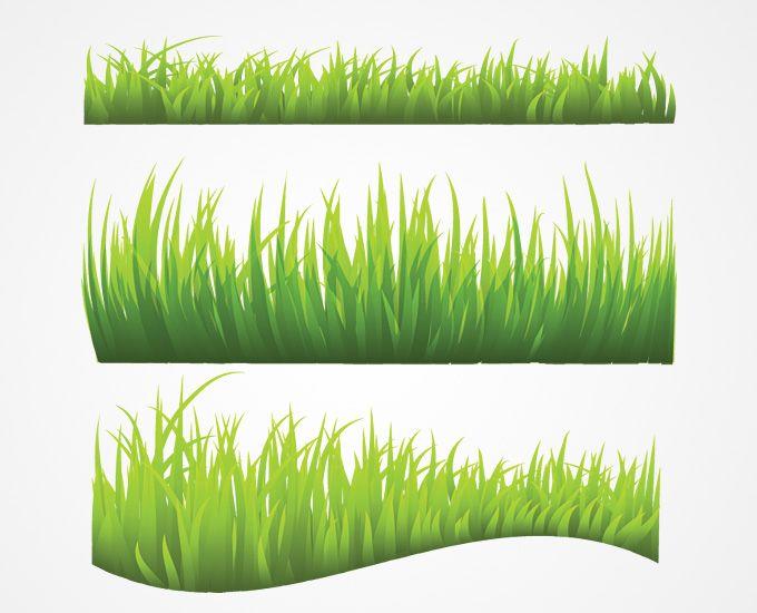 Grass Vector (Free).