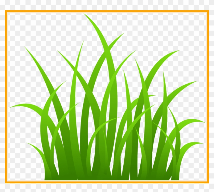 Free Png Download Grass Png Images Background Png Images.
