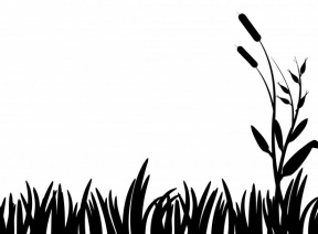 Grass PNG Silhouette Clip Art Image.