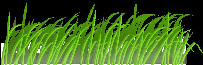 Free Clipart: Grass texture.