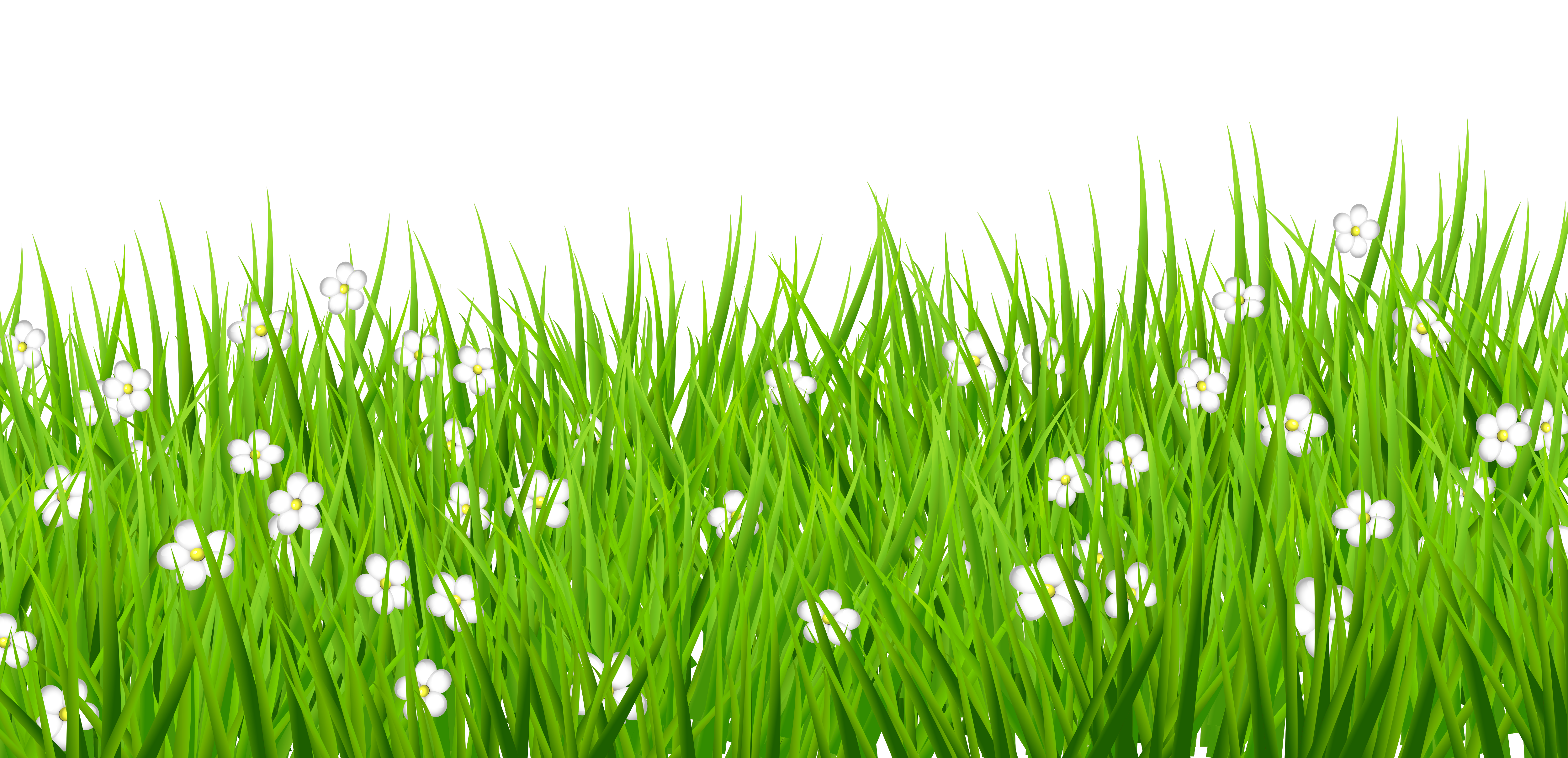 Free Transparent Grass Clipart, Download Free Clip Art, Free.