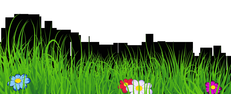Grass Transparent Clipart.
