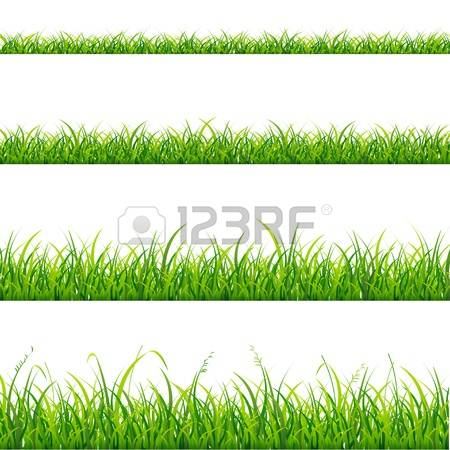 253,062 Grass Stock Vector Illustration And Royalty Free Grass Clipart.