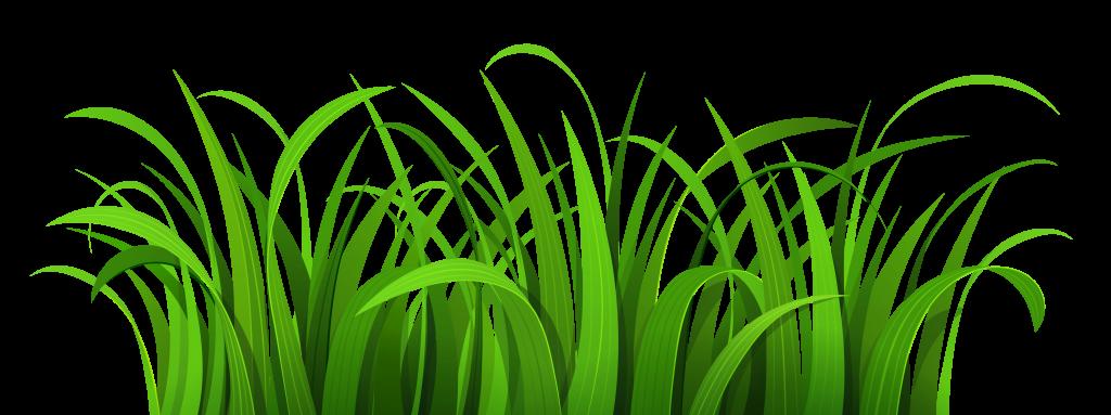Best Grass Clipart #10832.