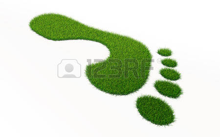 92 Grass Clipping Stock Vector Illustration And Royalty Free Grass.