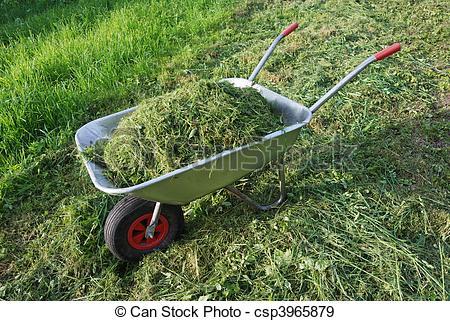 Stock Photographs of wheelbarrow on a lawn with fresh grass.