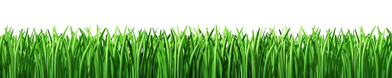 Free Lawn Cliparts, Download Free Clip Art, Free Clip Art on.