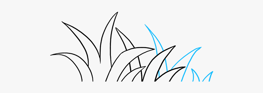 How To Draw Grass.