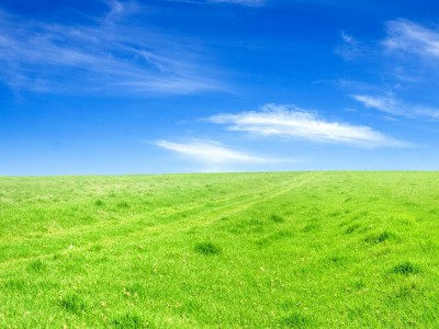 Sky Grass Field Free PPT Backgrounds for your PowerPoint Templates.