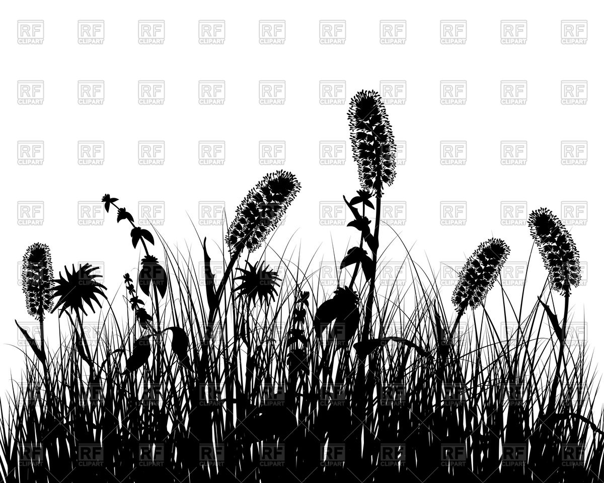 Black wild grass silhouette background Vector Image #92673.