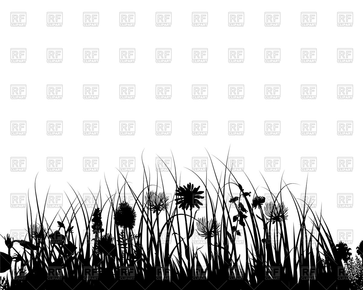Silhouette of grass and flowers Vector Image #82175.