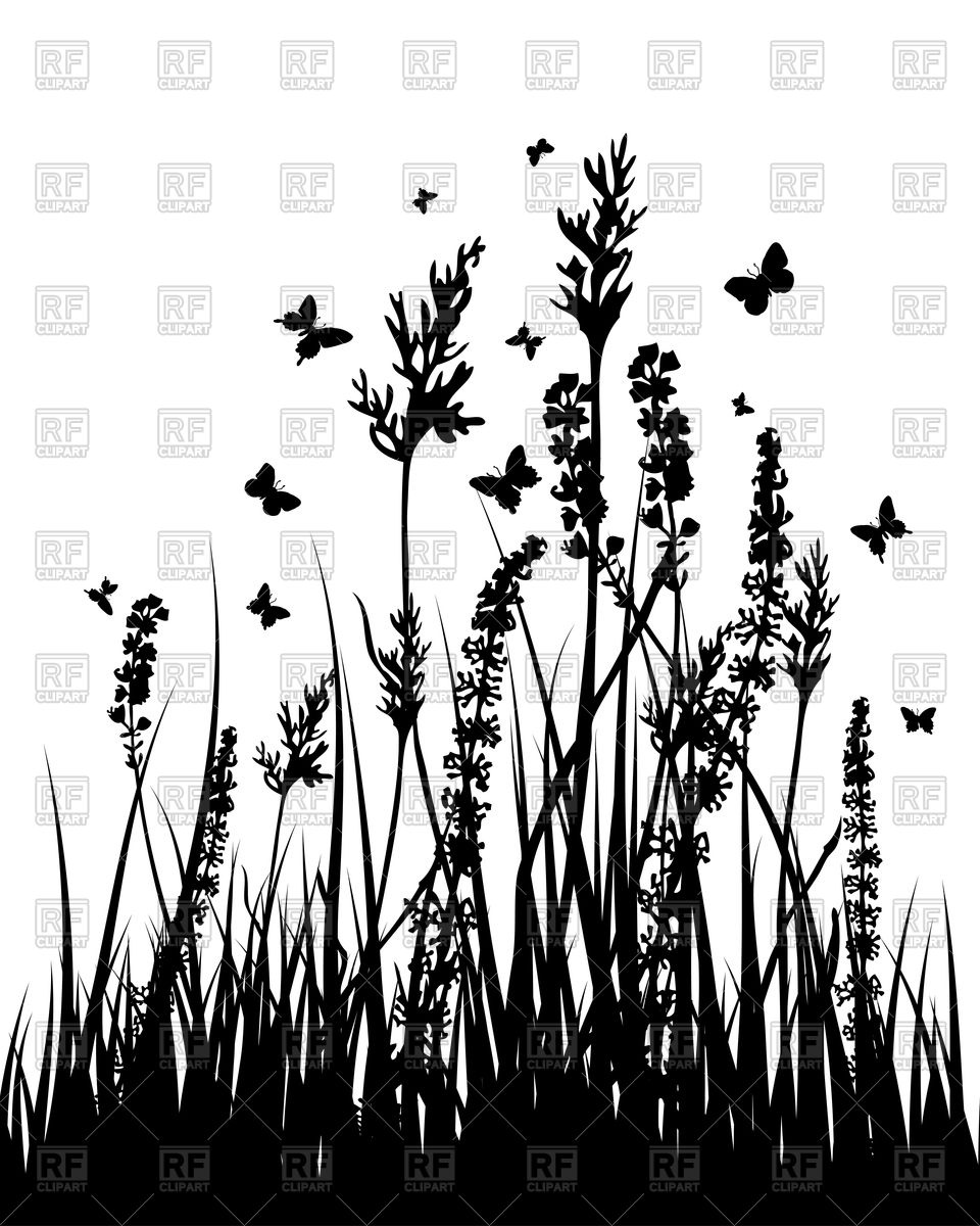 Grass and wild flowers silhouettes background Vector Image #85830.