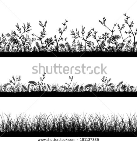 Vector Wild Herbs Flowers Silhouettes Three Stock Vector 181137335.