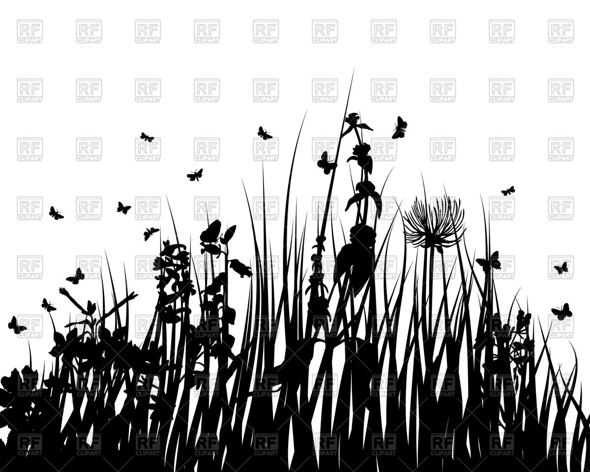 Silhouettes of grass and flowers Vector Image #84032.