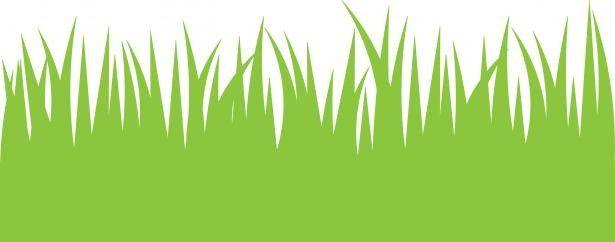Tall Grass Clipart Norwottuck Lawn Care.