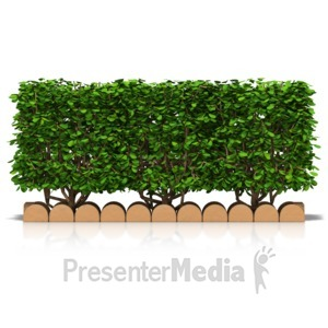 Hedge Clipart 20 Free Cliparts Download Images On