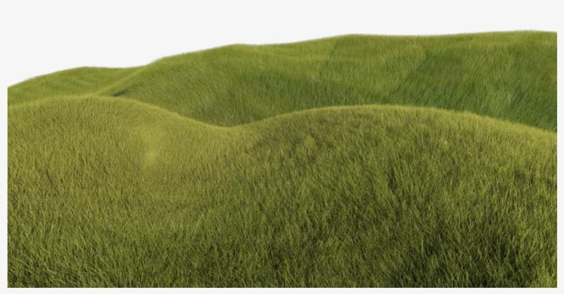 Grass Hill Png.