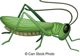 Grasshopper Clipart and Stock Illustrations. 1,292 Grasshopper.