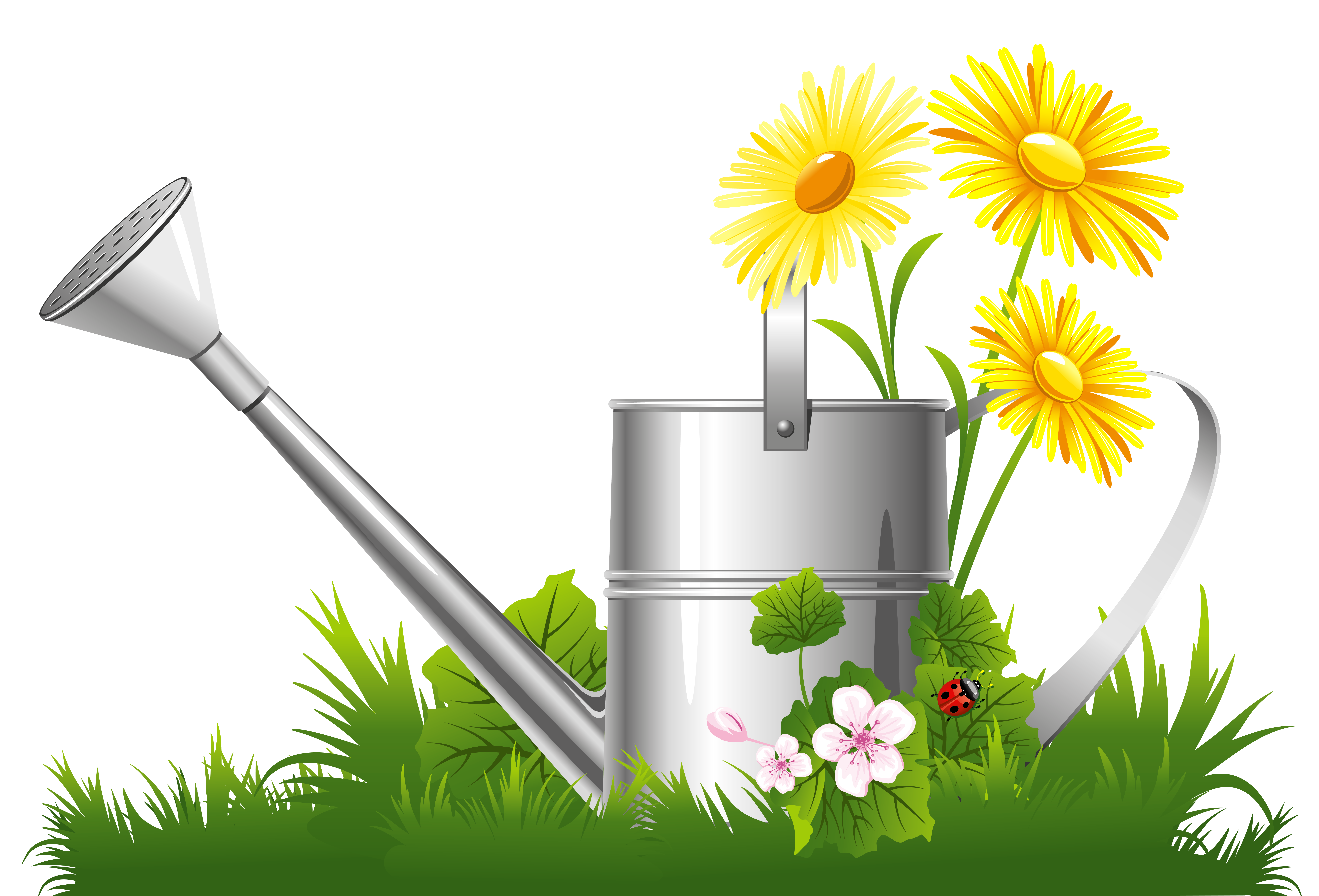 spring grass clipart - Clipground