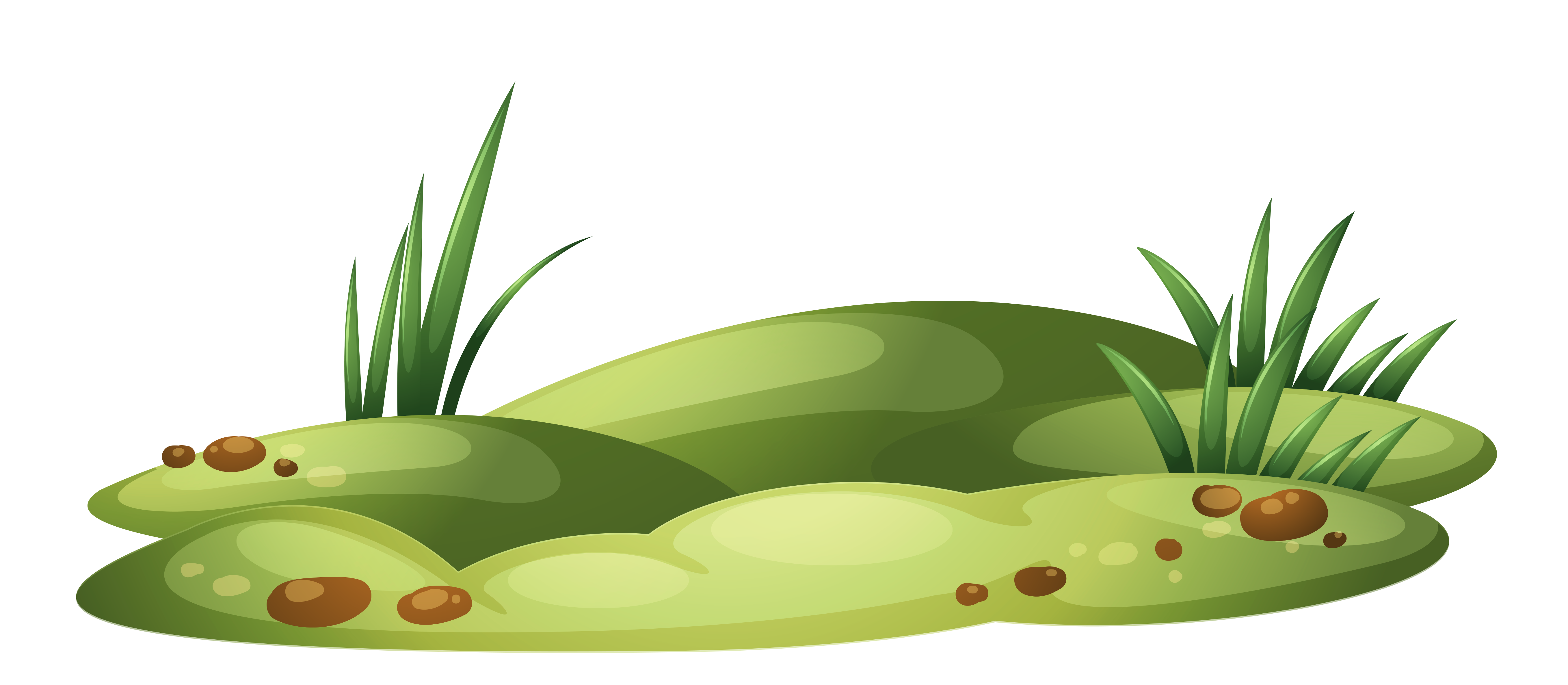 Patch Of Grass Clipart.