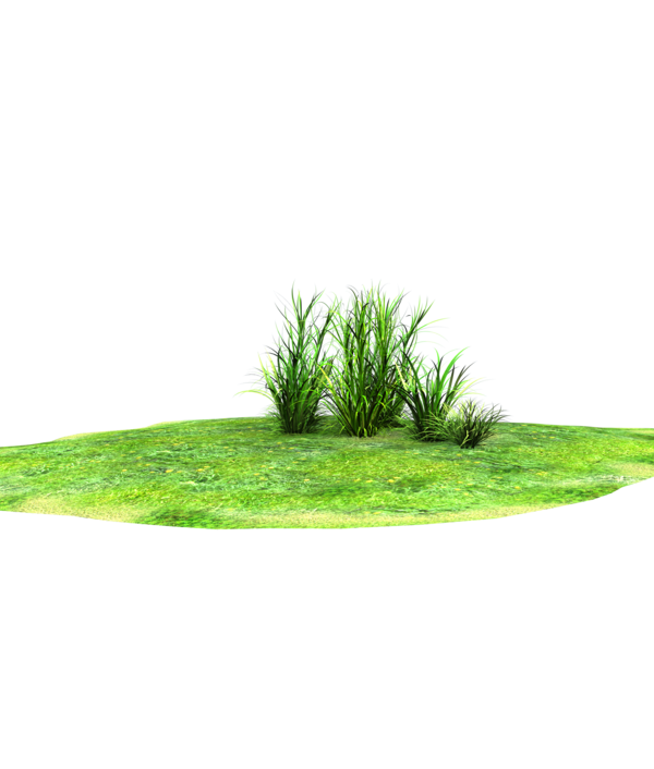 Patch of grass clipart with ref.