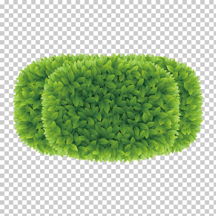 Greening plan view diagram, oval green grass illustration.